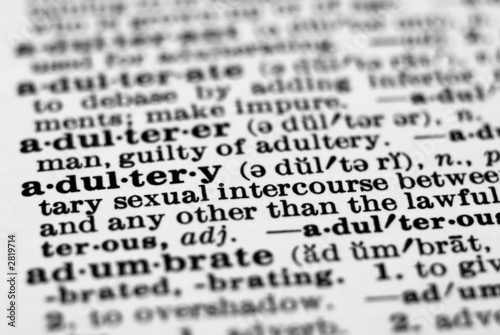 dictionary definition - adultery Wallpaper Mural