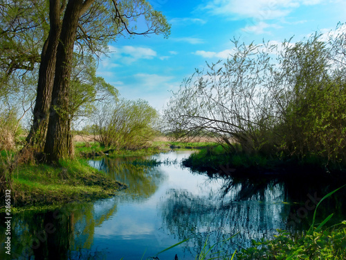 Aluminium Prints Blue spring landscape by the river