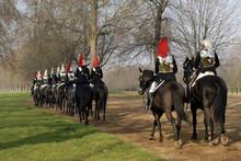 Horse Guard #1