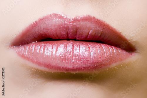 Fotografie, Obraz  lips