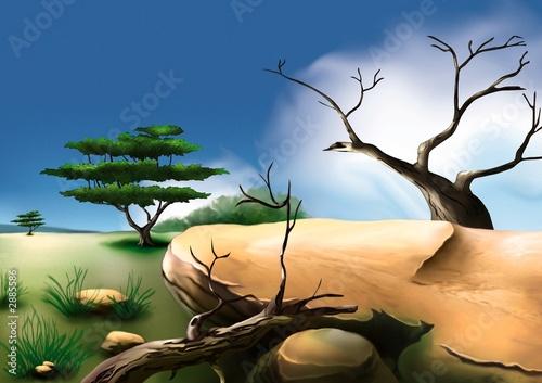 Foto-Flächenvorhang - african bush (von Roman Dekan)
