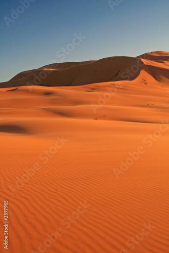 Foto op Aluminium Koraal erg chebbi sand dunes