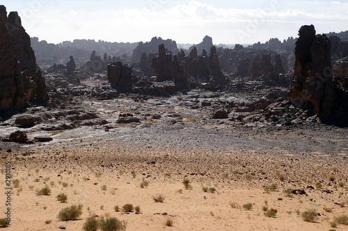 Poster Algeria forêt de pierre sur le tassili n'ajjer
