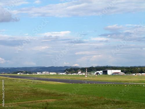 Foto auf Acrylglas Schwan flugplatz