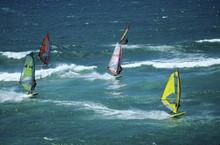 Windsurfers On Mauii