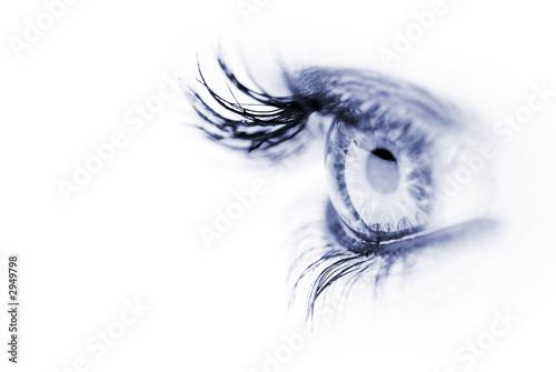 Photographie blue eye