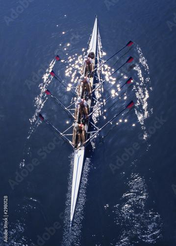 Fotografie, Obraz  rowing-34c