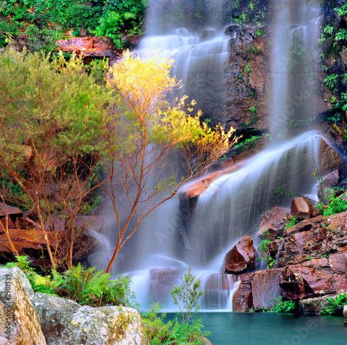 Plakaty Dżungla kolorowy-wodospad