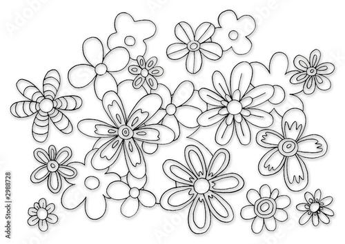 Fotografia, Obraz  fleurs noir et blanc