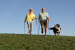 canvas print picture - nordic walking ehepaar