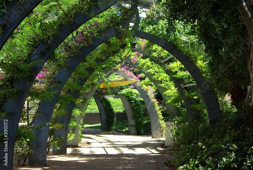 Fotografija flower archway