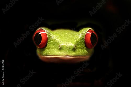 La pose en embrasure Grenouille crazy frog