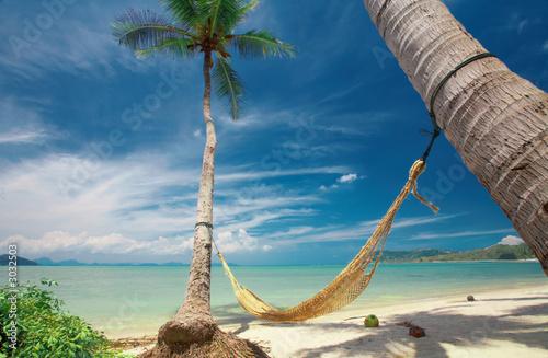 Fotografie, Obraz  hammock