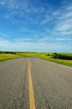 Mustard Road