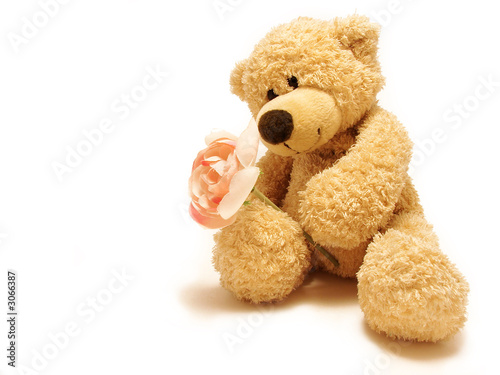teddy-bear giving rose #3066387