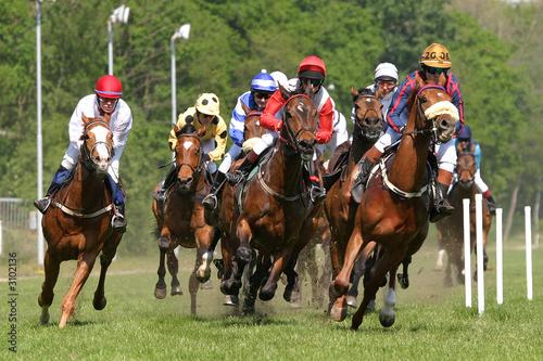 Fotografía horses at racetrack