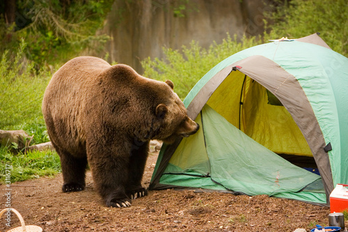 Spoed Foto op Canvas Kamperen camping