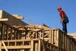 construction worker,carpenter