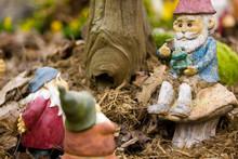 Sitting Garden Gnomes