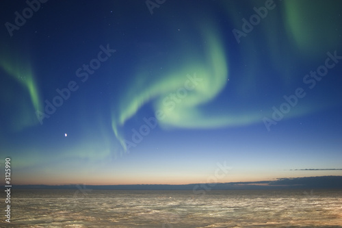 Fotografia, Obraz  Twilight Aurora Borealis