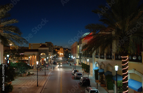Fotobehang Wenen nightview of palm beach, florida