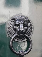 Panel Szklany tête de lion noir