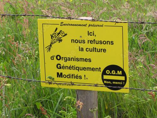 """Fotografering  1052 - pancarte """"non aux ogm"""""""