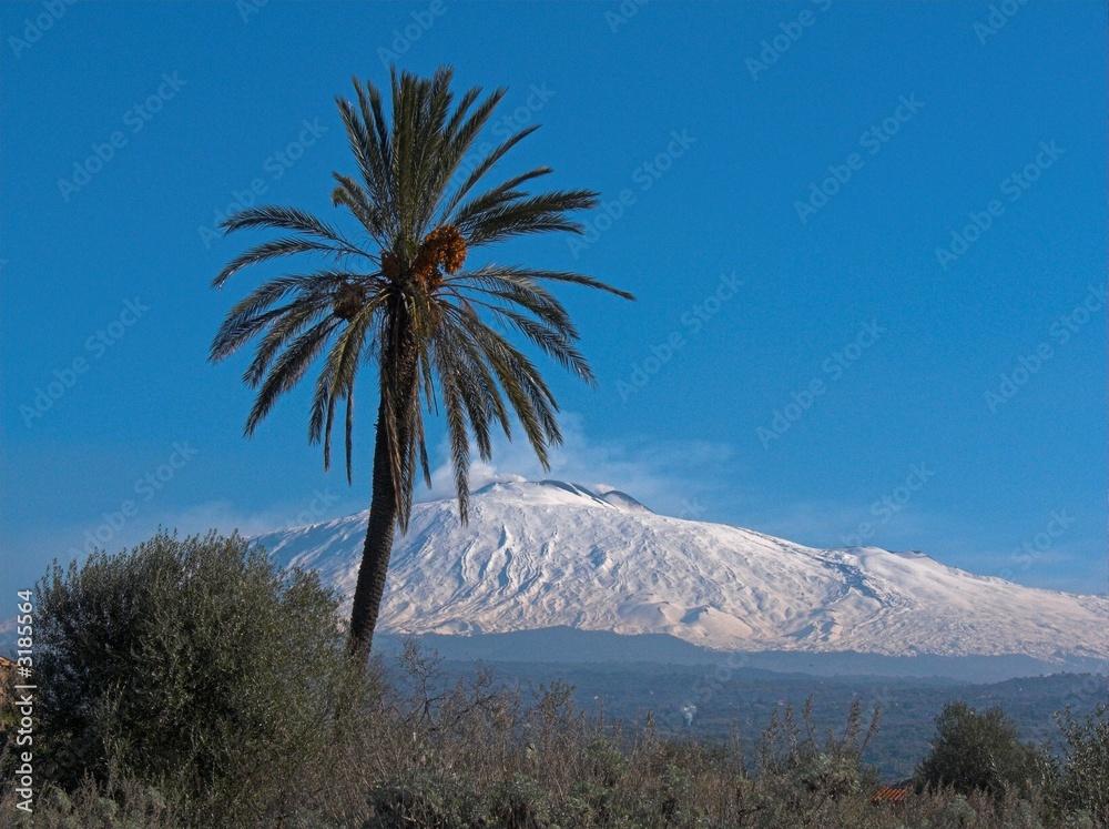 Fényképezés  paesaggio etna con palma