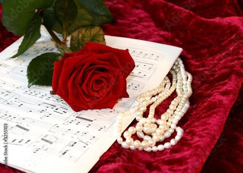 Vászonkép opera music