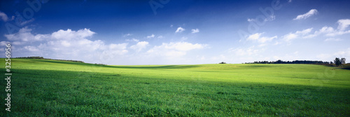 Poster Meadow russia summer landscape - green fileds, the blue sky and white c