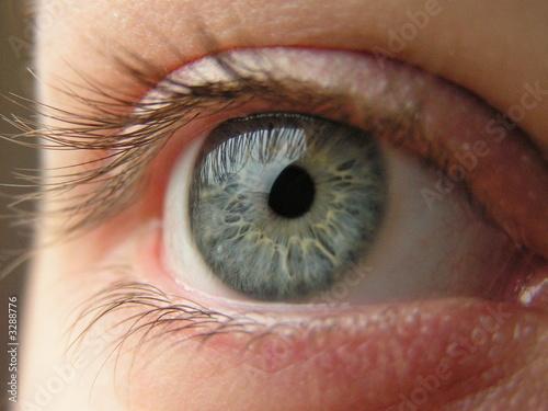 Foto op Aluminium Iris blue eye