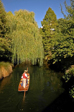 Punt On The River Avon