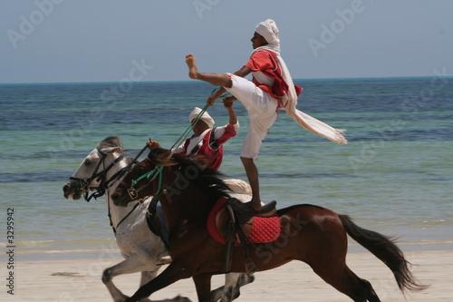 Photo  cavalier tunisien