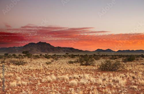 Poster de jardin Desert de sable sunset in kalahari desert