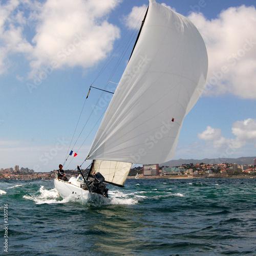 Garden Poster sailing