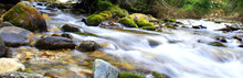 Beautiful Brook