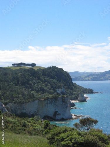 Foto op Canvas Cathedral Cove steilküste