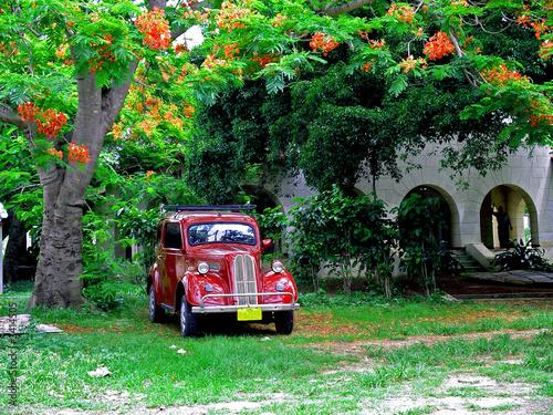 Türaufkleber Autos aus Kuba voiture cubaine a l'ombre