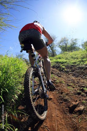 mountain biking Fototapeta