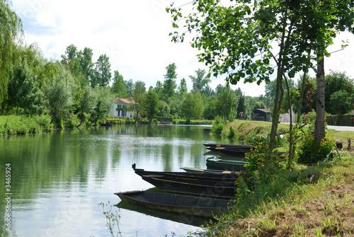 Fotografie, Obraz  barques du marais poitevin