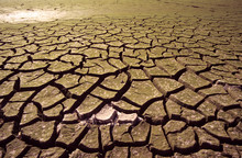 Drought-4