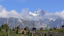Tibettan Border
