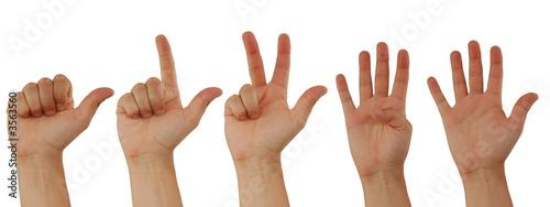 Obraz na plátně Eins, Zwei, Drei, Vier, Fünf, Handzeichen für Zahlen
