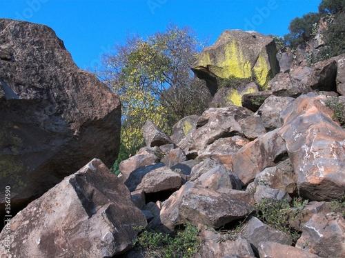 Fényképezés  basalto