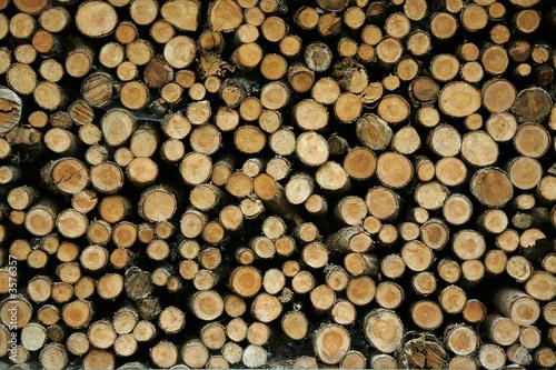 Valokuva  legno