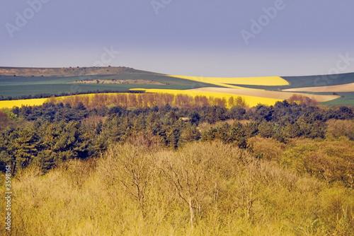 Fotografia typical pas-de-calais countryside