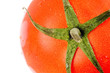 a red tomato close up shot