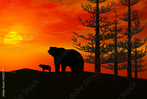Foto-Kissen premium - 3D render of bears (von Byron Moore)