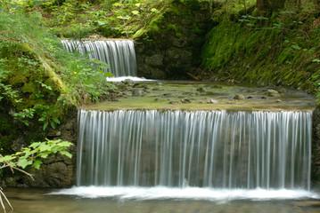 Forest cascade waterfall
