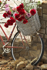 Fototapeta Basket of roses on a bicycle